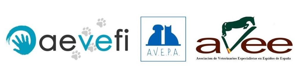La Rehabilitación animal es reconocida como competencia Veterinaria.